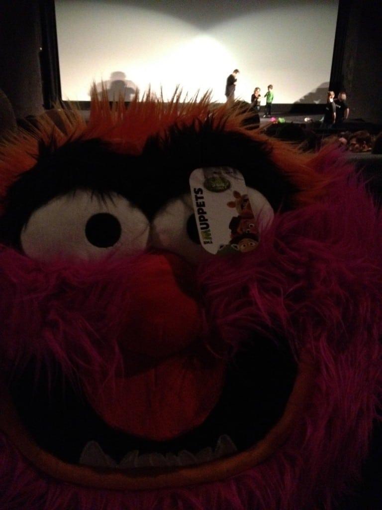 Les Muppets - Coussin