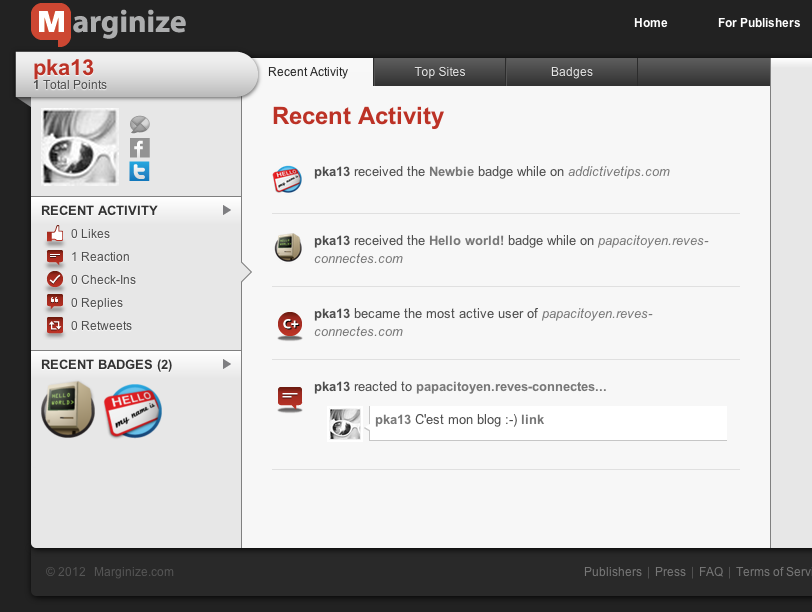 Marginize - Journal d'activités sur le profil