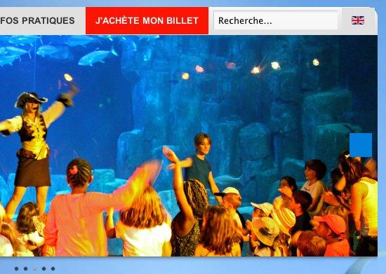 Aquarium de Paris - Nouveau site web - Caroussel