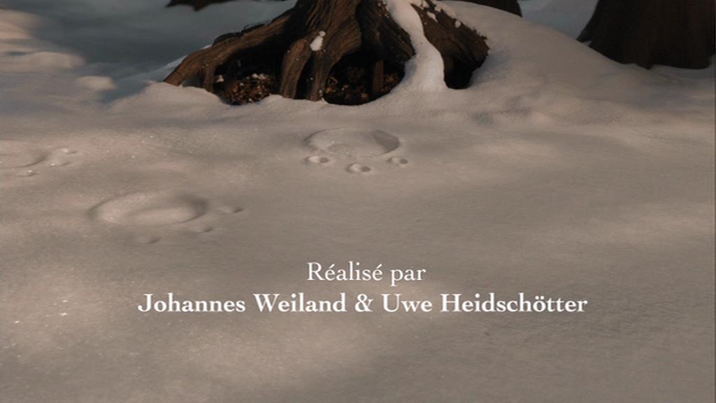 Le Petit Gruffalo - vlcsnap-2013-02-25-11h29m20s210