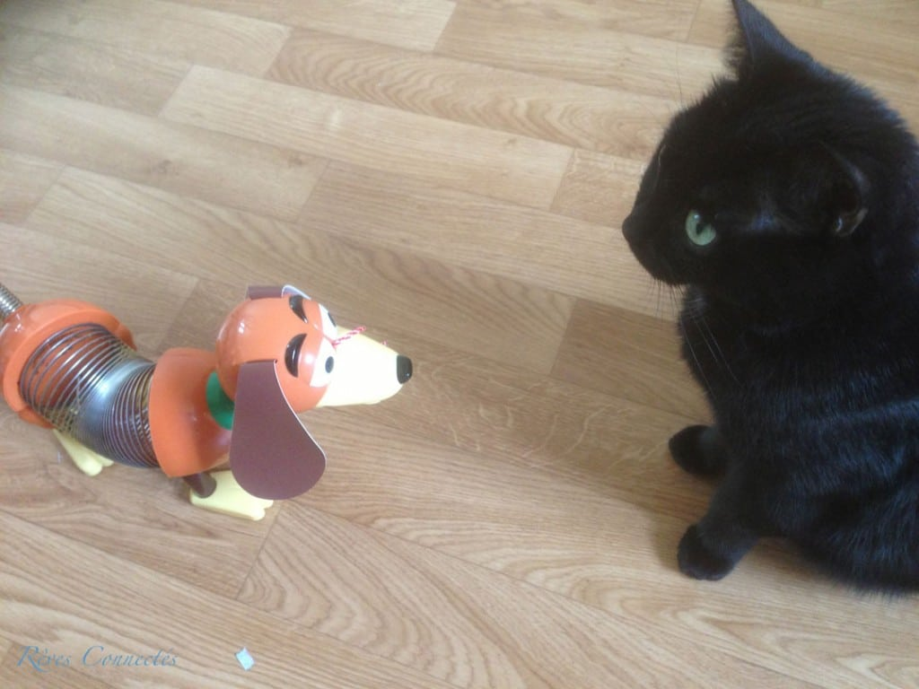 Anniversaire-Toy-Story-7816