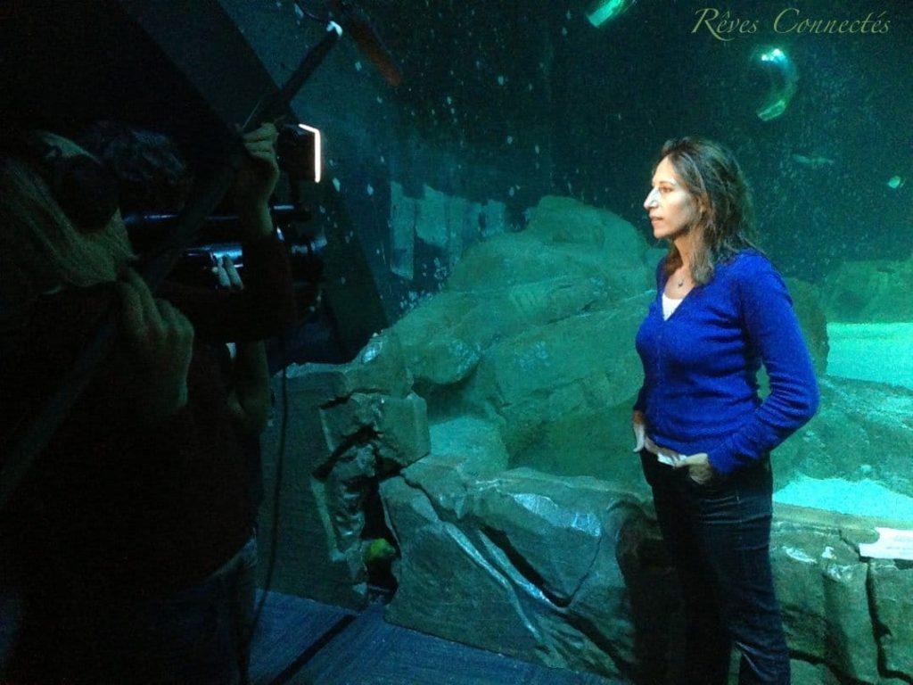 Aquarium-de-Paris-Maud-Fontenoy-Requins-0309