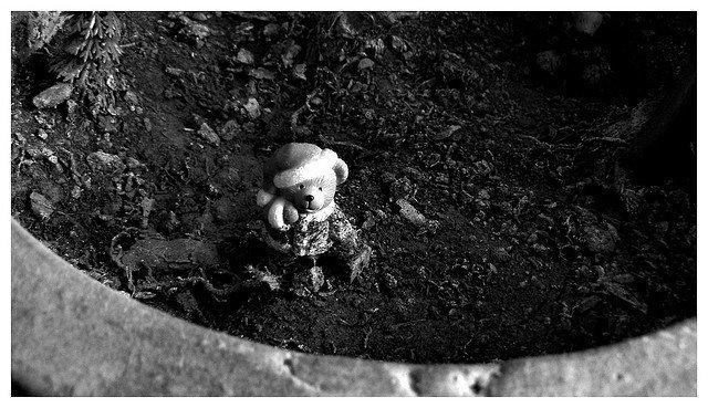 FlickR CC. Ces petites choses par Spry. https://www.flickr.com/photos/spry/461967478/