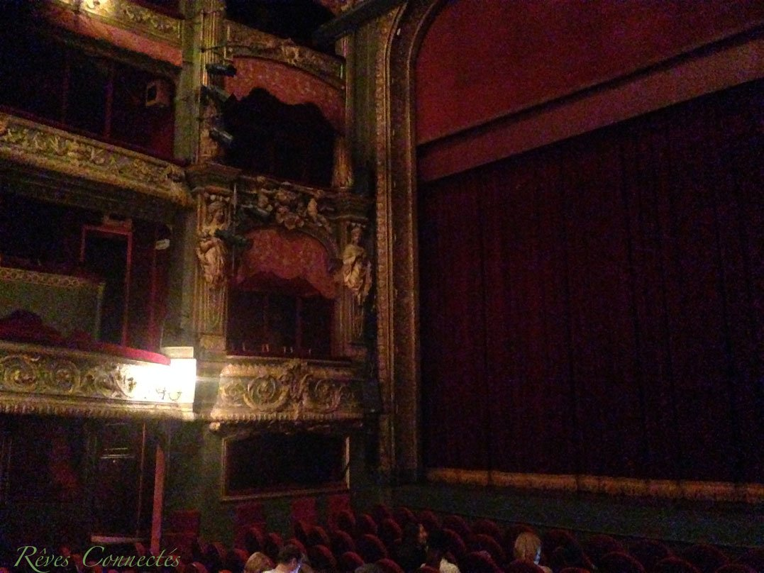 Pinocchio-Theatre-du-Gymnase-5584