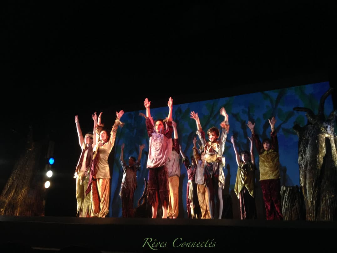 Pinocchio-Theatre-du-Gymnase-5588
