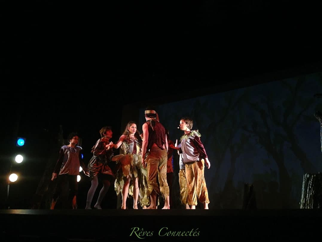 Pinocchio-Theatre-du-Gymnase-5589