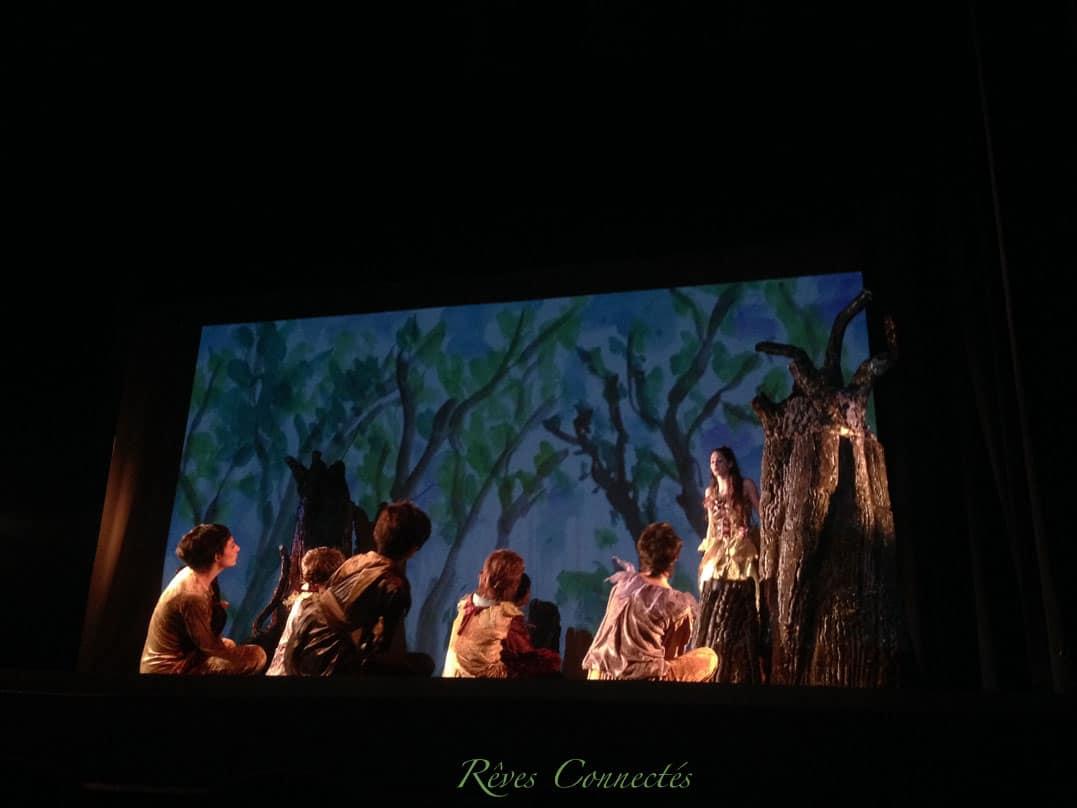 Pinocchio-Theatre-du-Gymnase-5593