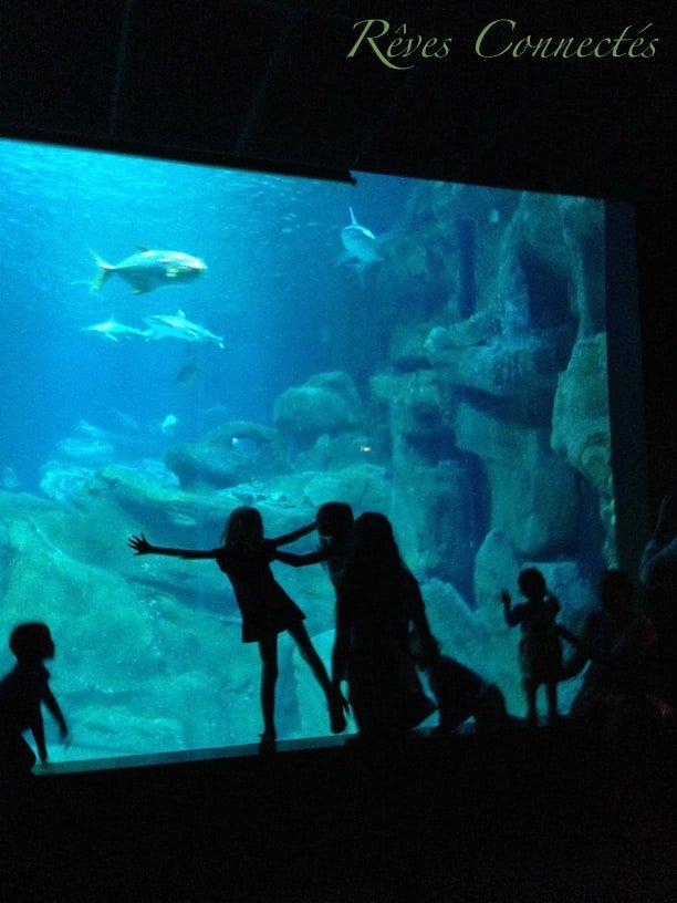 Aquarium-de-Paris-Playmobil-7809