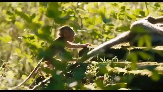 Au royaune des singes vlcsnap-2015-11-01-16h36m52s486